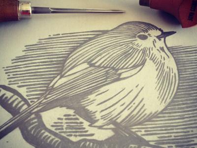 Robin1 #robin #cut