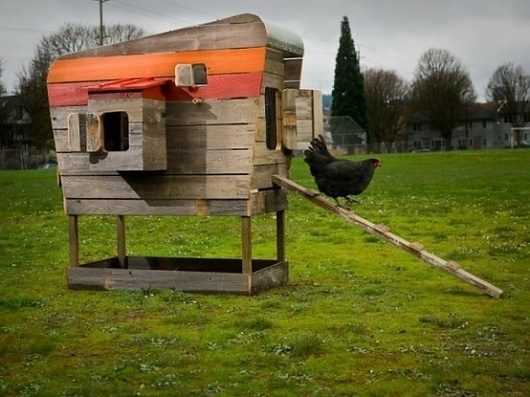 addicitons / chicken coop. #coop #architecture #house #chicken