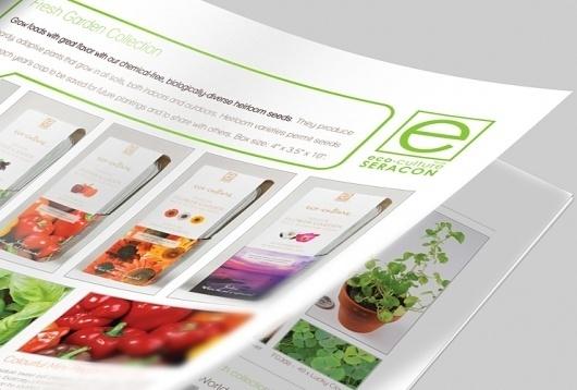 Seracon   WAHBA MEDIA   Graphic Design   Web Development   Branding #catalog #print #eco #green