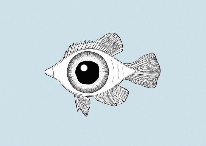 фото несуществующие рыбы картинки умение проводить прямые