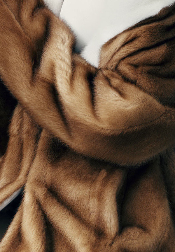 Fur #luxury #photography #animal #fur