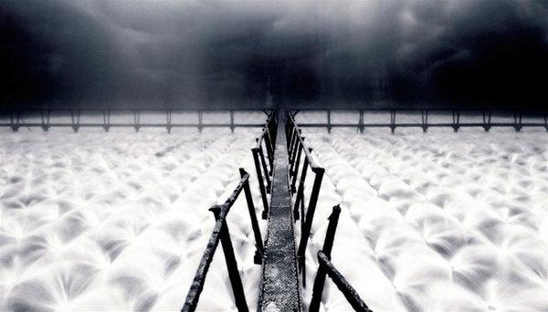 Johann Ryno de Wet #photography