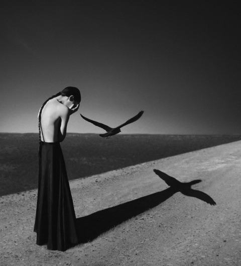 Noell S. Oszvald | PICDIT #photo #photography #white #black