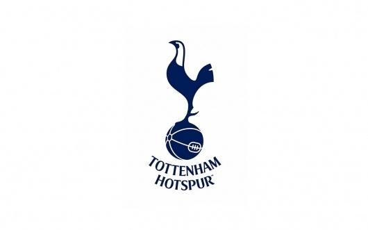 Google Image Result for http://www.thomascraigconsulting.com/uploads/2011/01/Tottenham_Hotspurs_1280x800_by_bigband683.jpg #tottenham #premier #english #soccer #bird #league #logo #football #ftbol