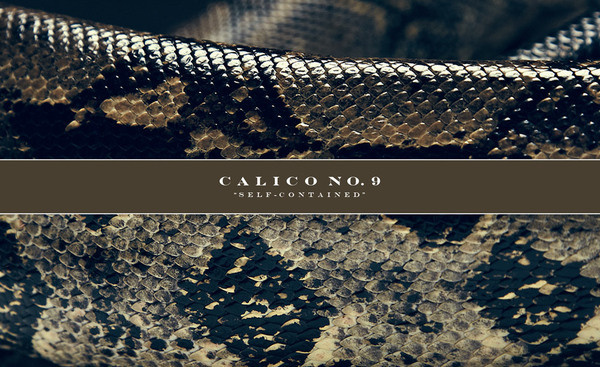 Calico No.9 ® #shipping #clothing #container #self #shirt #calico9 #photography #contained #streetwear #fashion #style