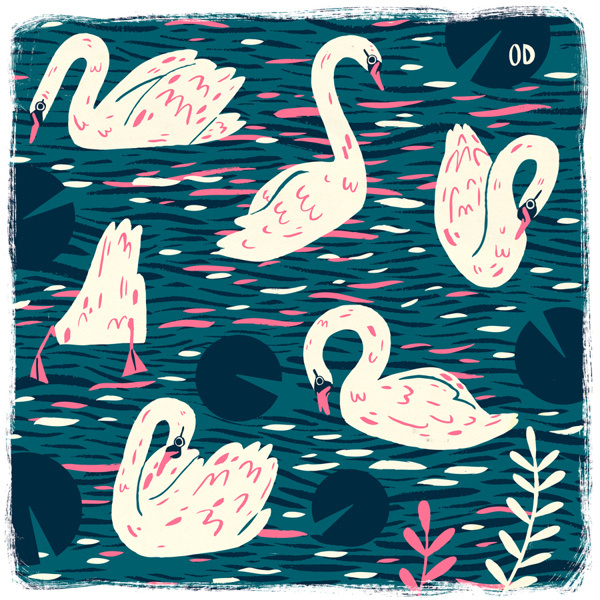 Owen Davey on Behance #swans #water #color #birds #illustration #animals