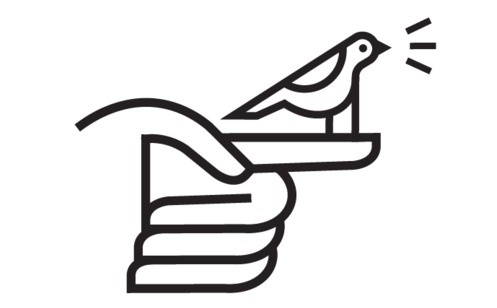 Field Study | Spring is here and the birds are tweetin! #icon #bird #twitter #logo #hand