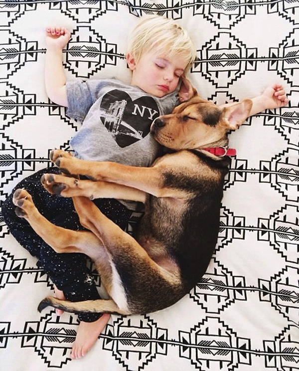 A Naptime Story with Dog and Baby 5 #photography #baby #dog