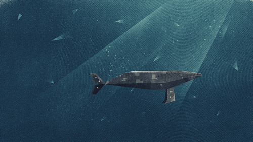 10394 98c195a large #whale #illustration #fiftytwonetwork