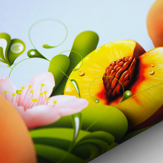 Probar Fruition #illustration