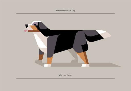 lumadessa_canine_02 #lumadessa #dog