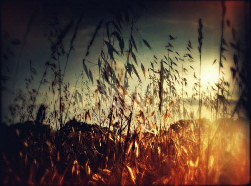 Double Exposure Photography: 50+ Examples and Tutorials #sun #photography #orange