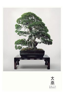 #KENYA #HARA 佐藤 可士和 #JAPAN Designer