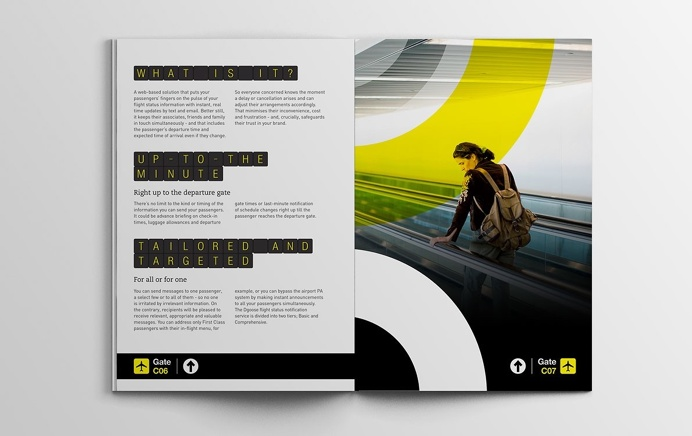 Dgoose Technologies brochure #brochure #print #design