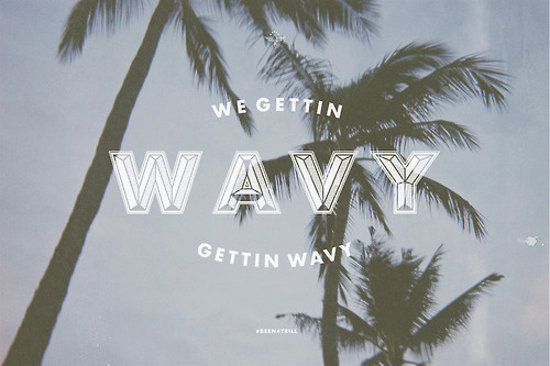 Wavy #palm #tree #design #type #wavy #typography
