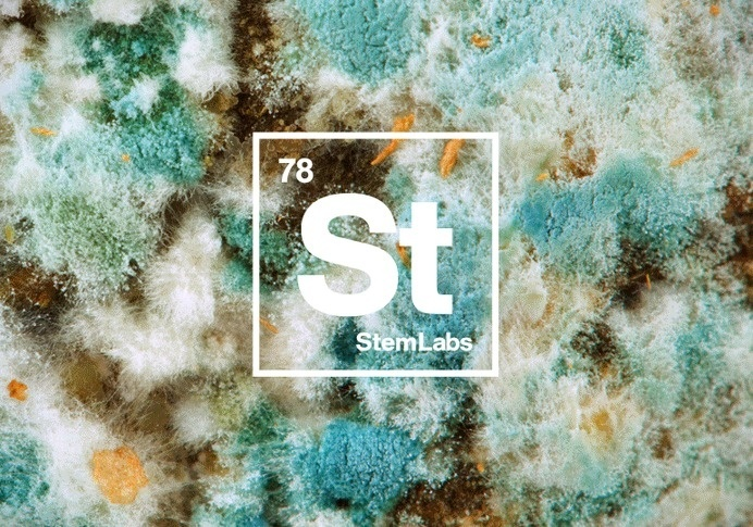 StemLabs #germs #ice #logo #square #materials #fire #medical #periodic #helvetica #physics #table #science
