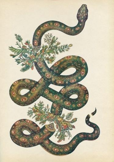 ♡KITTËN♡ #snake