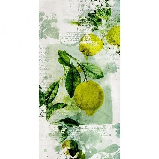 by D and B - Dubois & Barral #collection #botanic #duboisbarral