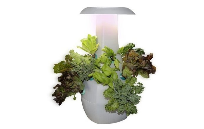 ROOT, an intuitive countertop gardening device that allows any city-dweller to become a skilled gardener! #modern #lifestyle #design #home #product #gardening #industrial #style