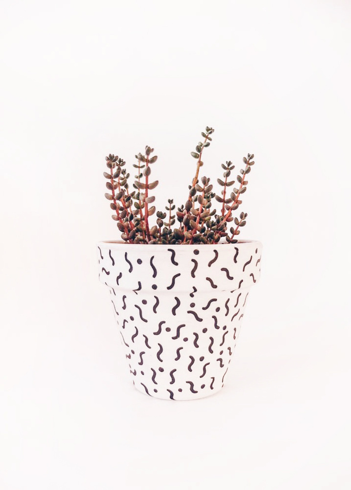 Projekt: eden #pattern #pot #plant