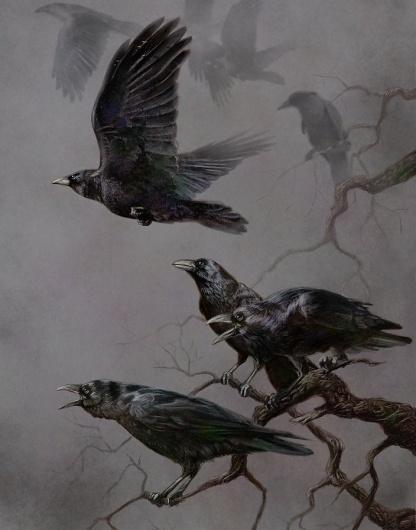 027_large.jpg (704×896) #crows #birds #illustrations