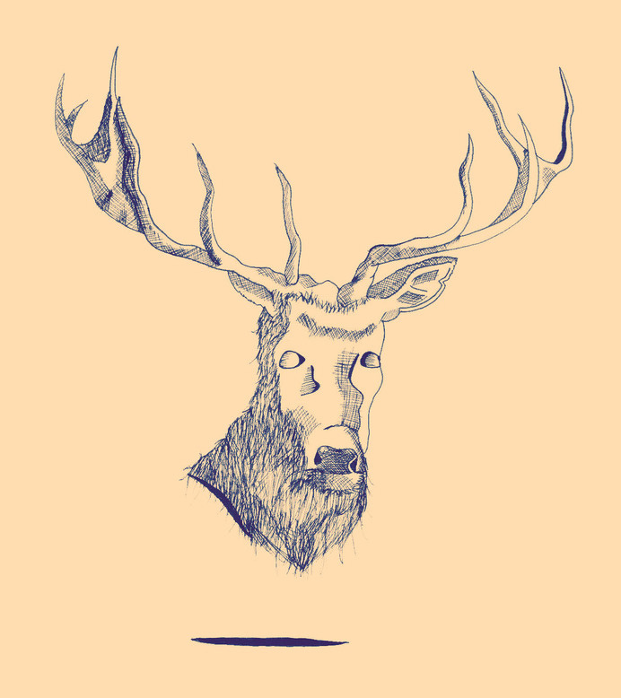 Dead Deer #antlers #deer #venison #stag #illustration #floating #minimal #dead #surreal #animal #weird #sketch