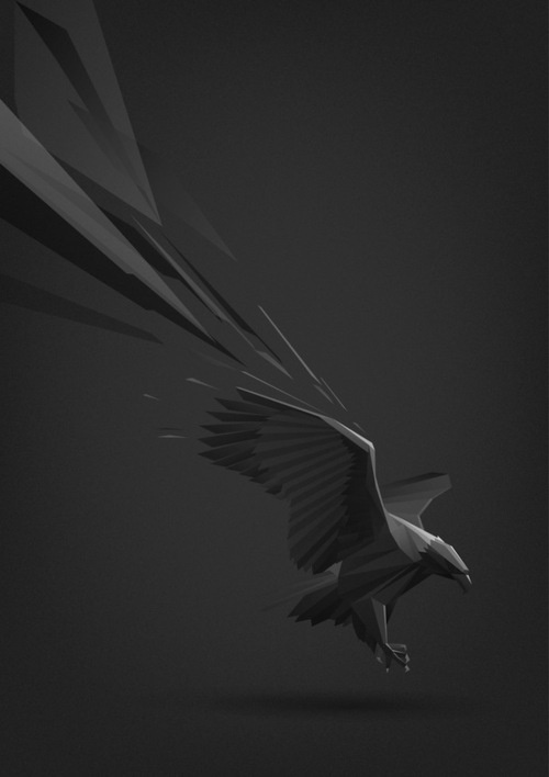 Animal illustrations by Ilya Andreev #vector #illustration #crow #animal #raven