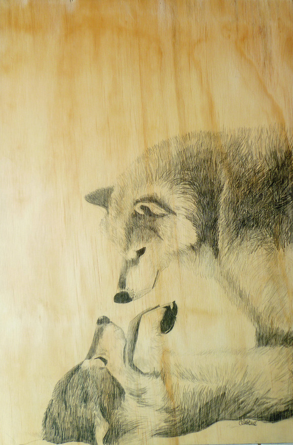 Wolves in the snow #wolves #wood #snow #art