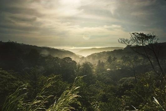 All sizes | Slightly raining | Santa Elena, Costa Rica | Flickr - Photo Sharing! #rica #photography #costa #nature