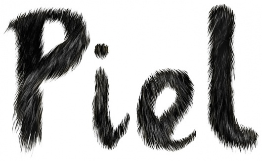 Ilustraciones de Carlos Egan #lettering