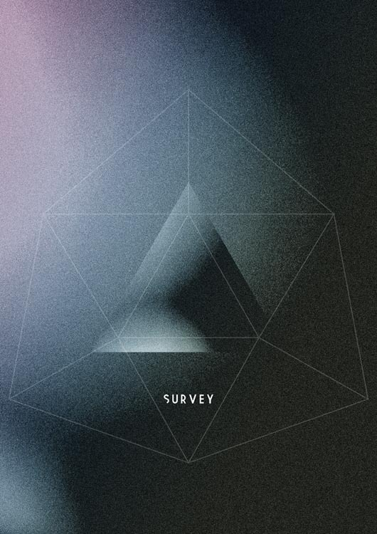 SURVEY #shadows #geometry #grain #glitch #poster #dark #electronic
