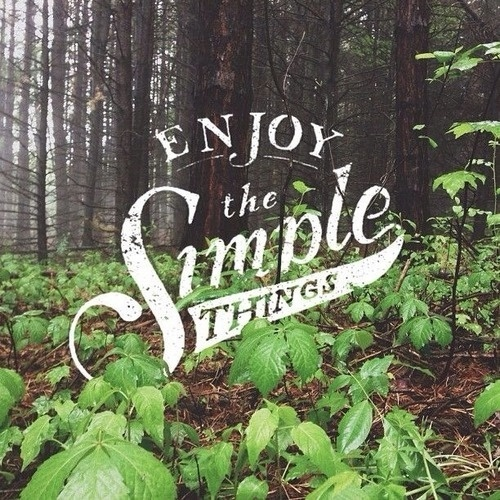 Enjoy the simple things - By Sean Tulgetske #quote #nature #inspiration #typography