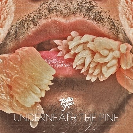 Pitchfork: Toro Y Moi: Hear the New LP, Watch the New Video #album #design #cover #photography #music