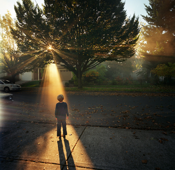 Flickr Finds No. 36 #tree #child #photography #sunset #light