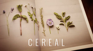 Good Cheap Fast #cereal #photography #identity #flowers