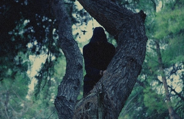 projects : Olga Tzimou #tree #figure #photography #forest #shadow