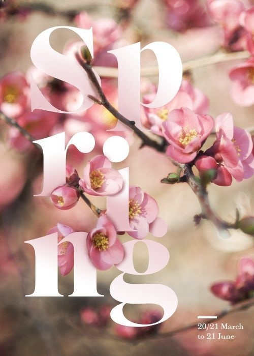 Four Seasons Typographic Posters #typographic #seasons #poster