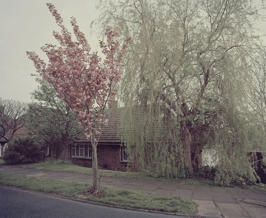 Sprung — Tom Hull — Photography #tom #hull #photography #sprung #spring