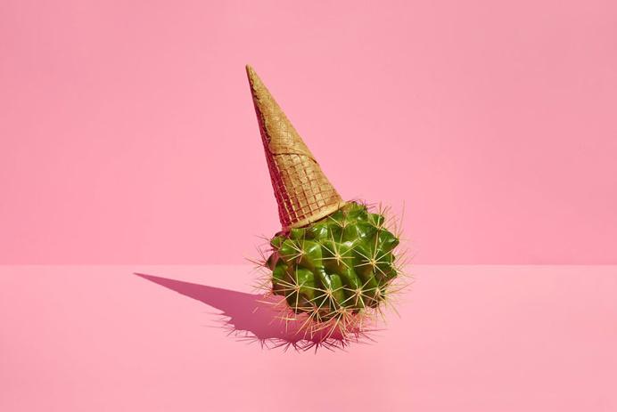 palomarincon #icecream #cone #cactus