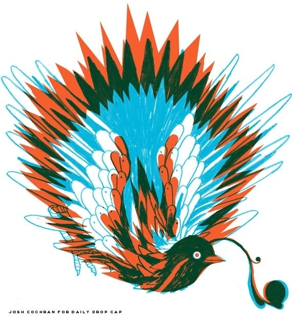 Guest Alphabet: Josh Cochran | Daily Drop Cap #josh #cochran #bird #letter #q