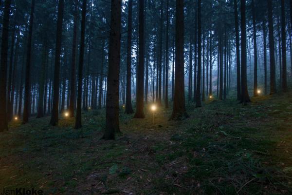 Jan Kloke - Misty Forest #kloke #woods #lights #cold #misty #warm #night #light #jan #blue #forest #dark