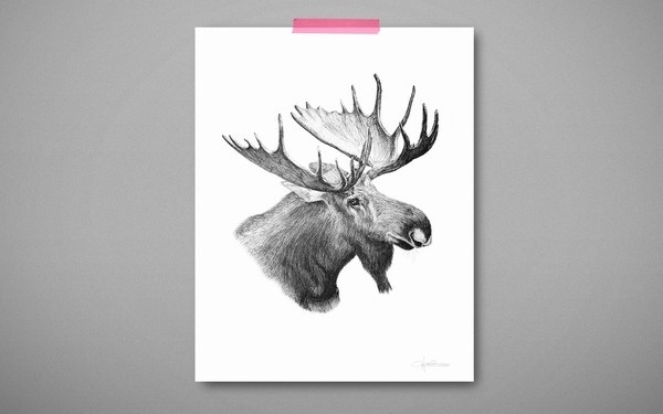 The Applemoose by Cecilia Hedin #antler #white #black #illustration #hedin #moose #and #cecilia #animal