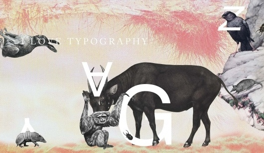 I Love Typography | collage illustration about the history of the alphabet #typography