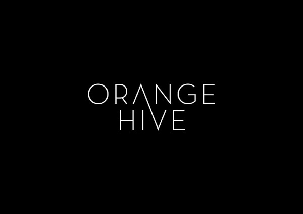 Orange Hive #logo #corporate #design