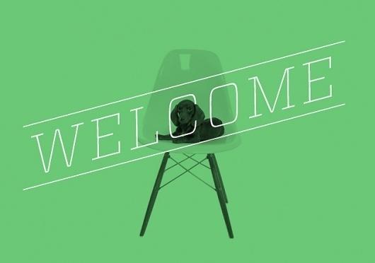 Andrew Passas #welcome #home #dog