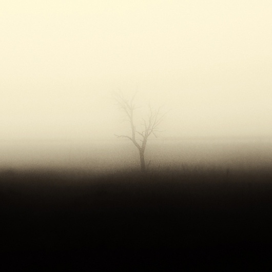 White Noise on the Behance Network #fog #photo #heiderich #photography #matthias