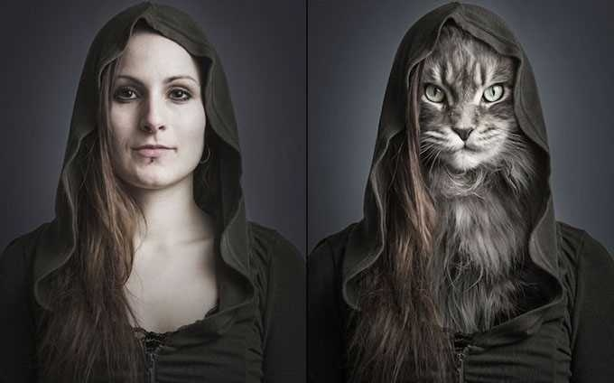 UnderCats by Sebastian Magnani #inspiration #creative #photography