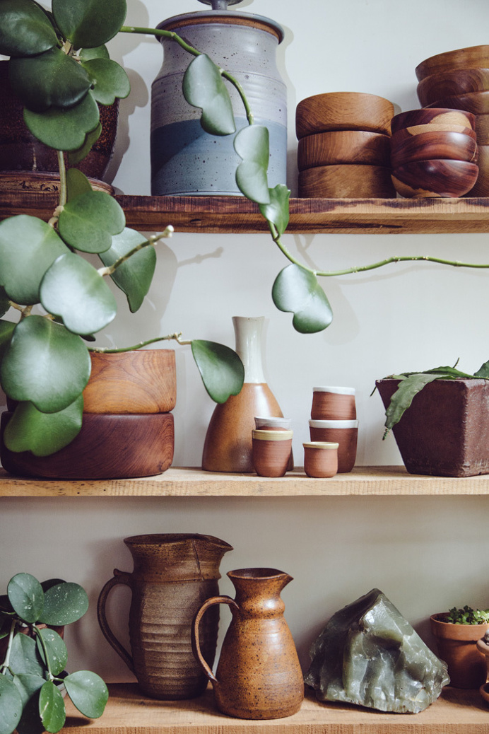 plants, home