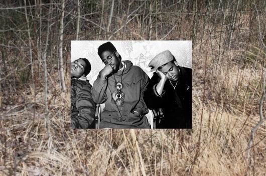 100% Paper #hop #collage #hip #nature