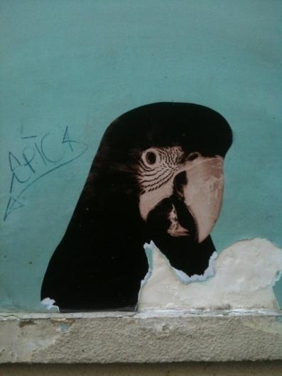 Merde! - Street art (epentesis: sweetsforsight, via... #art #street